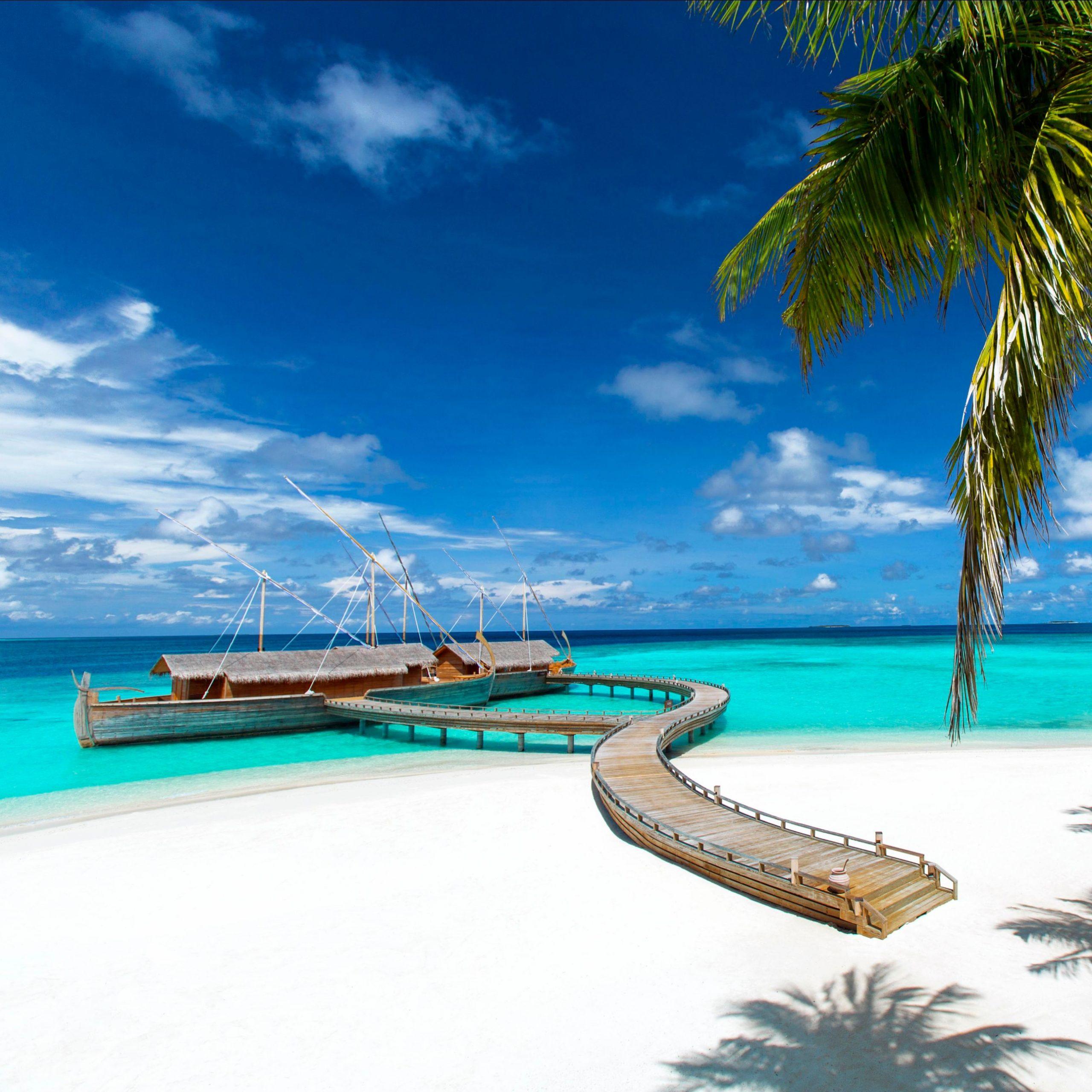 Private Jet to the Maldives